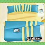 CFD 2229