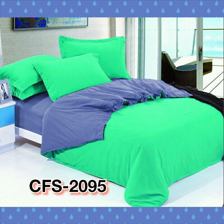 CFS-2095