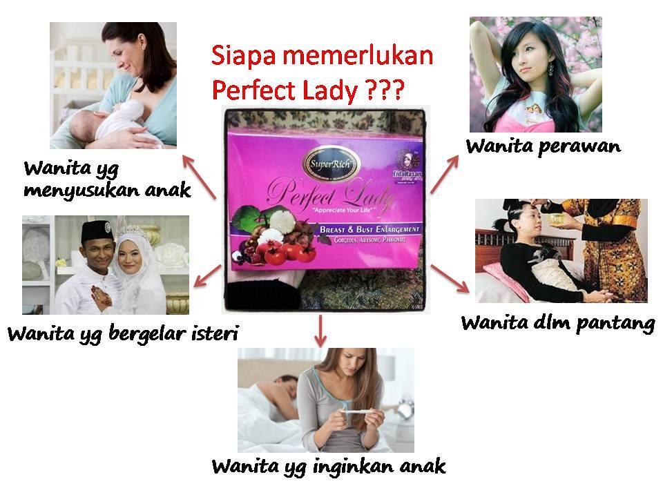 siapa yg memerlukan perfect lady